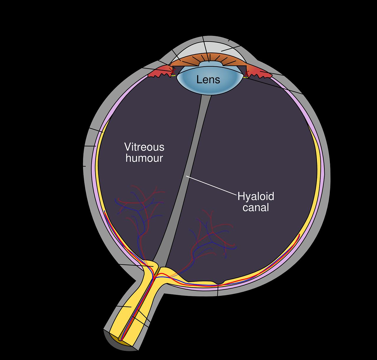 cornea-surgery-delhi